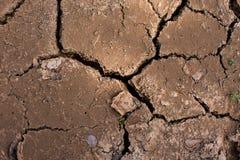 lera cracked torr jordningssäsong Royaltyfri Bild