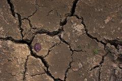 lera cracked torr jordningssäsong Royaltyfri Fotografi