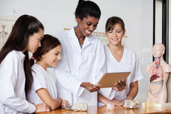 Leraar With Teenage Girls die Digitale Tablet gebruiken bij Stock Afbeeldingen