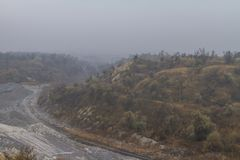 Leravillebråd i dimman Arkivbilder