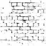 Lerciume del fondo del muro di mattoni Immagini Stock