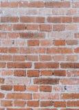 Lerciume e vecchia parete della costruzione con cemento ed il mattone fotografie stock libere da diritti