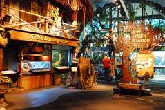 Lerend Centrum bij Shedd-Aquarium stock foto's