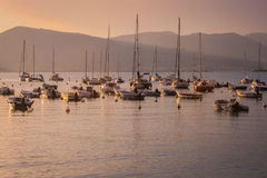 Lerici harbour - Sailing boats. A view of the harbour of Lerici at sunset Royalty Free Stock Image