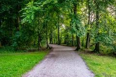 Lerig väg in i en skog på den Haagse bosen, skog i Haag Fotografering för Bildbyråer