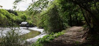 Lerryn flod Royaltyfria Foton