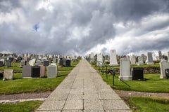 Lerwick cemetery2 Fotografering för Bildbyråer
