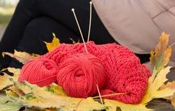 Les écheveaux du fil et du tricotage à jour sont sur le banc Photo libre de droits