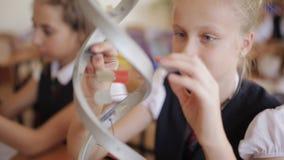 Les écoliers dans l'uniforme scolaire étudient la disposition de l'ADN se reposant dans la salle de classe Le concept de l'école banque de vidéos