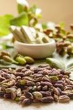 Les ?crous doux, sensibles et parfum?s, les pistaches de Bronte avec la couleur verte brillante, ingr?dient pour la cuisine itali photo libre de droits