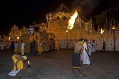 Les éléphants cérémonieux défilent après le temple de la relique sacrée de dent à Kandy dans Sri Lanka au début de l'Esala Perahe image stock