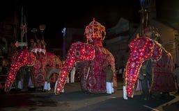 Les éléphants cérémonieux défilent par les rues de Kandy pendant l'Esala Perahera dans Sri Lanka photos stock