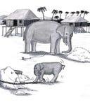 Les éléphants ont retenu le captif Images libres de droits