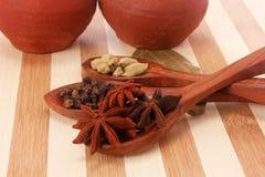 Les épices et les herbes, anis d'étoile, cardamome &milled le noir Image stock