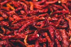Les épices rouges sèches de piments de piments garnissent épicé chaud Photographie stock libre de droits