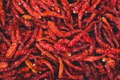 Les épices rouges sèches de piments de piments garnissent épicé chaud Photos libres de droits