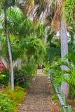 Les 99 étapes en Charlotte Amalie, St Thomas, USA VI Photo libre de droits