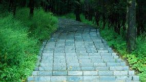 Les étapes en pierre de enroulement courues vers le haut du flanc de coteau photos stock