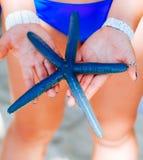 Les étoiles de mer bleues se tenant chez la main de la femme, les étoiles de mer bleues ont trouvé sur la plage de corail blanche Photographie stock libre de droits