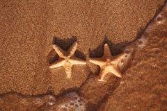 Les étoiles de mer rouges sur le sable échouent avec la vague et l'océan Photo libre de droits