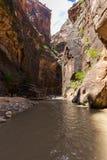 Les étroits en Zion National Park, Utah, Etats-Unis Photographie stock