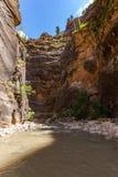 Les étroits en Zion National Park, Utah, Etats-Unis Images libres de droits