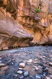 Les étroits en Zion National Park, Utah, Etats-Unis Photos stock