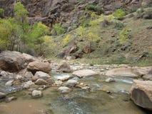 Les étroits, parc national de Zion, Utah Image stock