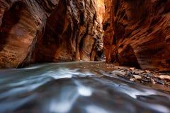 Les étroits traînent, parc national de Zion, Utah Photos libres de droits