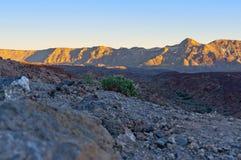 Les Îles Canaries Photographie stock
