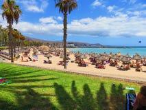 Les Îles Canaries, Tenerife photographie stock libre de droits