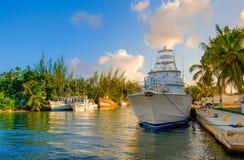 Les îles de Grand Cayman hébergent la marina de Chambre photographie stock