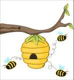Les abeilles volent hors d'une ruche Photo stock