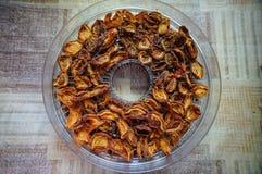 Les abricots secs Photo libre de droits