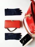 Les accessoires de femmes garnissent en cuir les lunettes de soleil noires de gants le ressort où rouge Autumn Womens Accessories images libres de droits