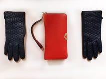 Les accessoires l ressort rouge Autumn Womens Accessories de femmes de mode de bourse de lunettes de soleil de gants en cuir vêtx images stock