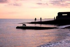 Les adolescents jouant au coucher du soleil sur les eaux affilent silhouetté par le soleil Photo stock