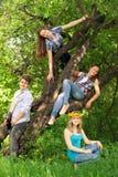 Les adolescents ont l'amusement dans le parc, jouant la guitare, chantant le fils Photo stock