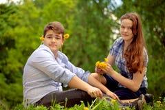 Les adolescents ont l'amusement dans le parc, jouant la guitare, chantant le fils Images stock