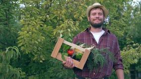 Les affaires végétales, homme de pays tiennent la caisse en bois avec les produits biologiques et le maïs disponibles clips vidéos