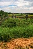 Les agriculteurs clôturent avec le chariot dans le domaine Photographie stock