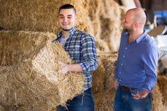 Les agriculteurs empilant le foin fauchent dedans Images libres de droits