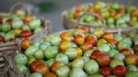 Les agriculteurs lancent les tomates sur le marché fraîches Photos stock