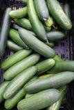 Les agriculteurs lancent sur le marché à vieux Scottsdale du centre, Arizona, Etats-Unis images stock