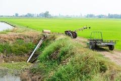 Les agriculteurs pompant l'eau au riz de jasmin met en place avec le vieux tracteur Image libre de droits