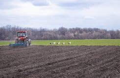 Les agriculteurs préparant le tracteur de terre et de fertilizingThe manipule la terre Les agriculteurs préparent la terre pour s image stock