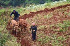 Les agriculteurs sur la terre rouge Image stock
