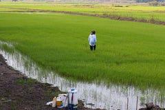 Les agriculteurs vont déchirer la médecine images libres de droits