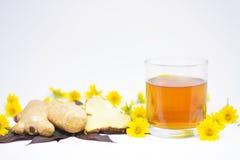 Les aides chaudes de jus de gingembre soulagent le froid et l'obstruction nasale Photos stock
