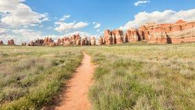 Les ailerons sur la colline d'éléphant/parc de Chesler traînent, nation de Canyonlands Photos libres de droits